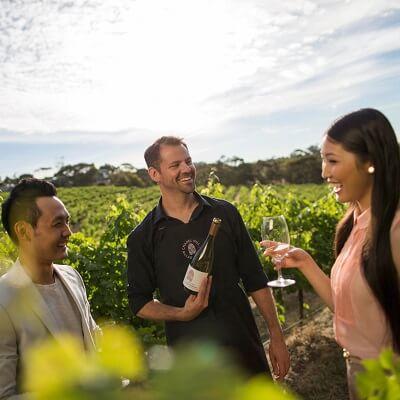 McLaren Vale Wine Tour with Hahndorf $99