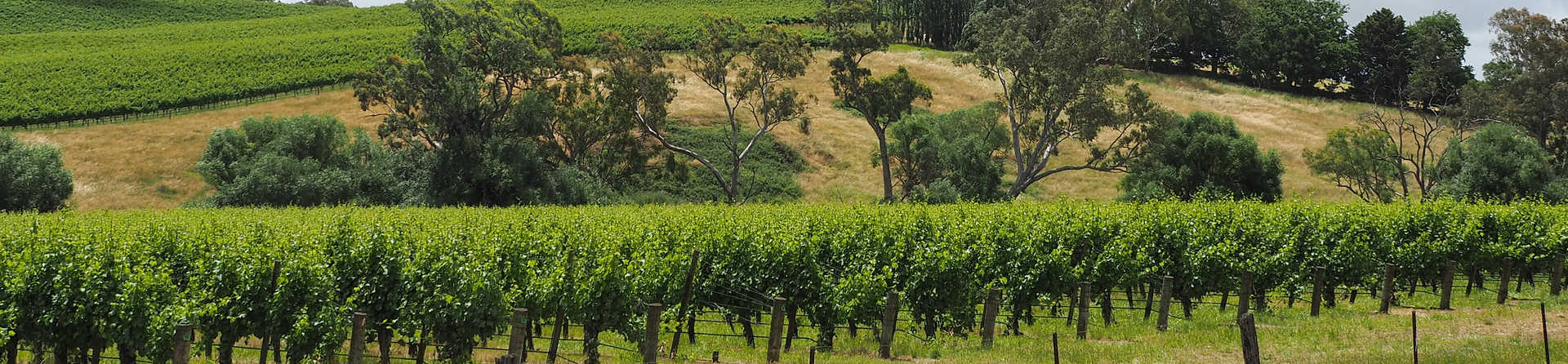 Why you should put Adelaide Hills on your bucket-list